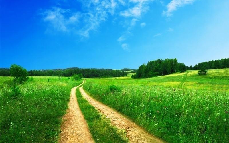 change the path / permalinks wordpress